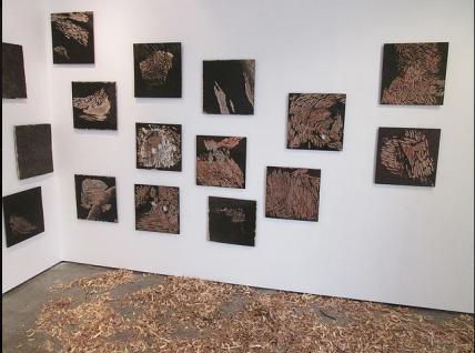 Presence of Absence George Fraser Gallery, 11 - 21 December 2013 Auckland, NZ